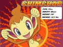 Pokemon - Chimchar