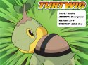 Pokemon - Turtwig